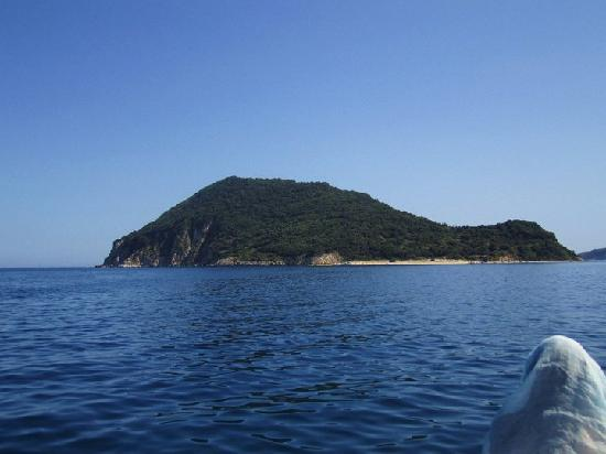 Canadian Hotel: Turtle island..would recommend the boat trip too!