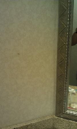 Holiday Inn Athens-University Area: Smudge on bathroom wall