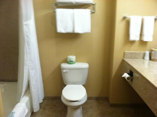 Holiday Inn Express Willows : Suite bathroom, clean and spacious