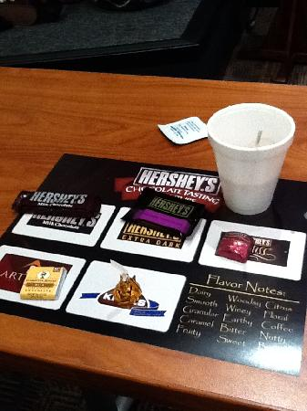 Hershey's Chocolate World : This is what you taste...