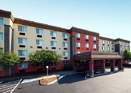 comfort inn suites updated 2017 prices hotel reviews. Black Bedroom Furniture Sets. Home Design Ideas