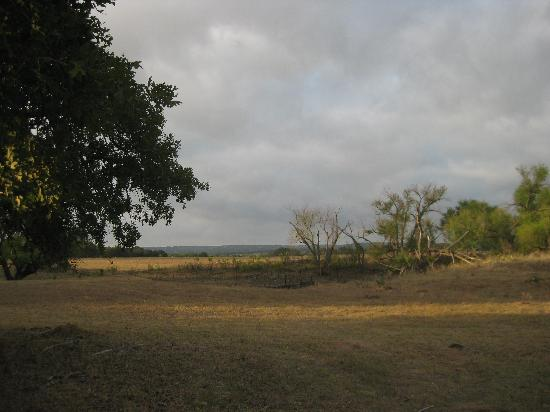 Buffalo Creek Ranch Cottages: Beautiful country