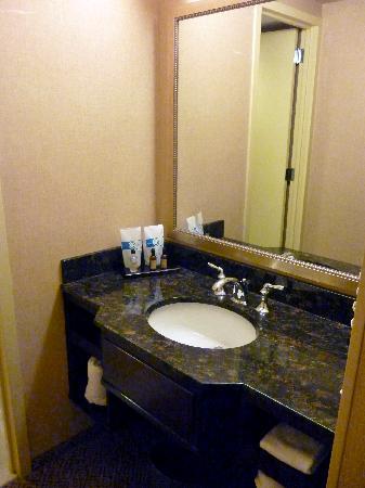 Springfield, MA: Room 1111 bath vanity area