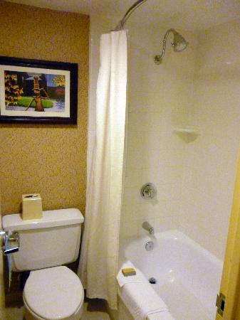 Springfield, MA: Room 1111 bathroom - tub and shower combo