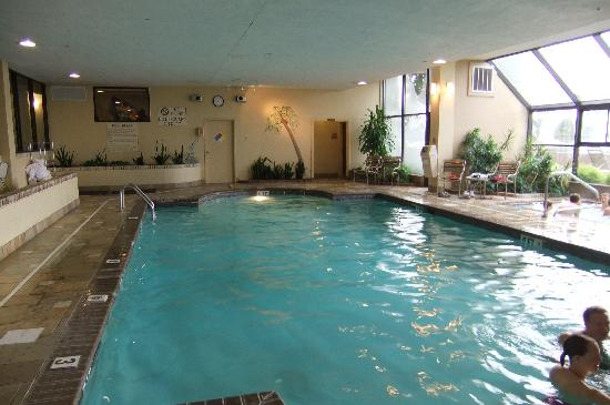 Embassy Suites by Hilton Colorado Springs : Pool