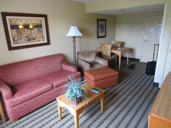 Homewood Suites by Hilton San Antonio Northwest: Living room
