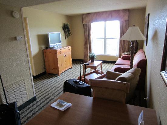 Homewood Suites by Hilton San Antonio Northwest: Living room