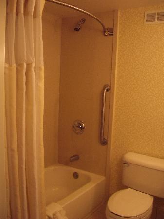 Hilton Garden Inn Oakland/San Leandro: shower