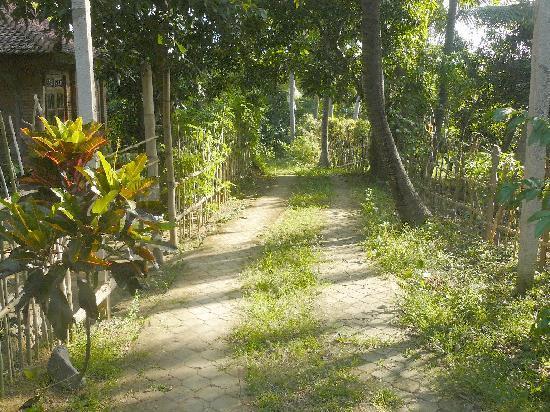 Pondok Abian Homestay : VIEW2