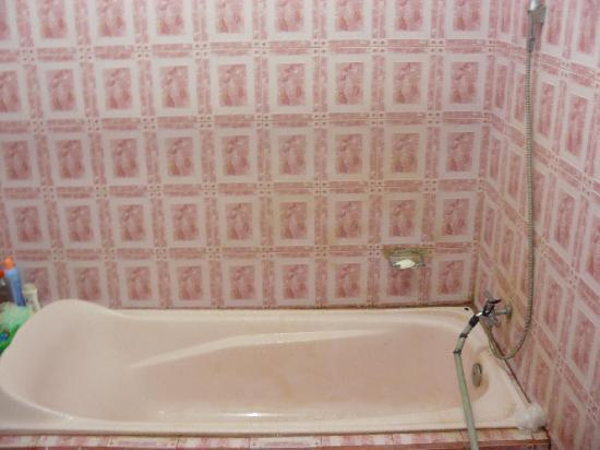 Pondok Abian Homestay : BATH TUB