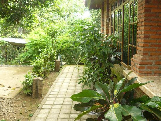 Pondok Abian Homestay : VIEW7