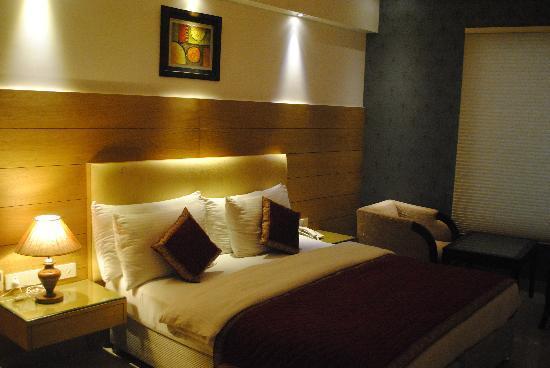 Hotel Krishna: Hotel Room Picture