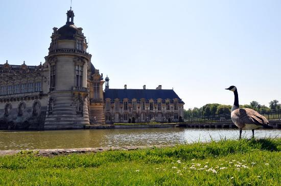 Chantilly, France : near the Chateau