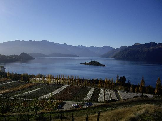 Avalanche Bed and Breakfast: Lake Wanaka from Rippon Vineyard