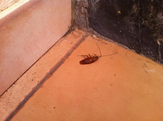 Tuineje, Spain: nicht sehr toll