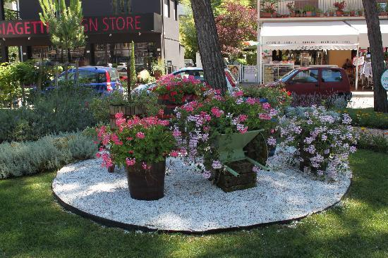 Milano Marittima, Italia: the flowers