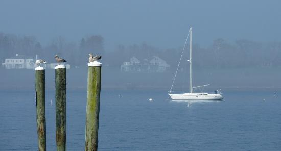 Bristol Harbor Inn: view from the pier