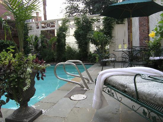 Swann House : Relax in our pool!
