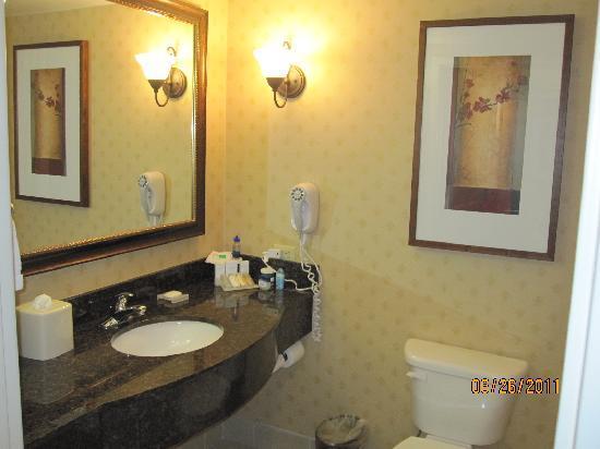 Hilton Garden Inn Denver / Highlands Ranch: Bathroom