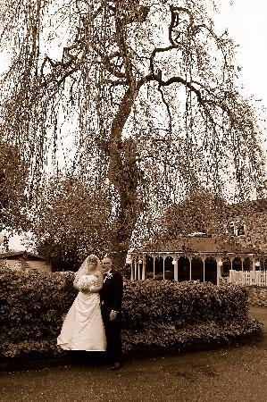 The Tower House Hotel: The weeping willow at the front of the hotel.