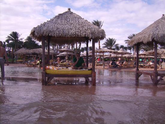 Laguna Vista Beach Resort: sun bathing in the middle of the sea