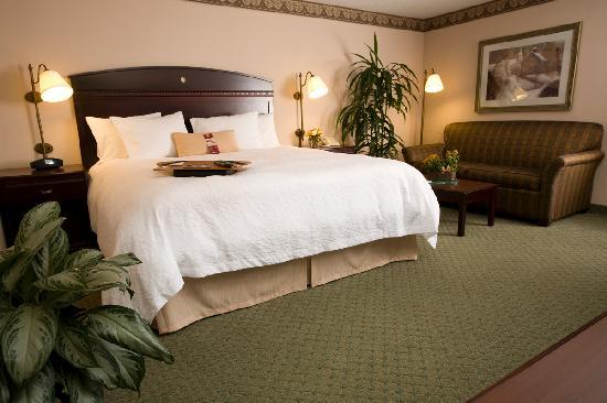 Hampton Inn Greensboro Airport : King Bed