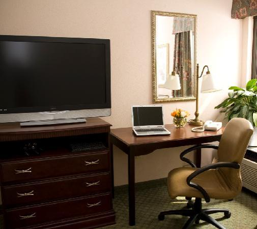 Hampton Inn Greensboro Airport: Desk