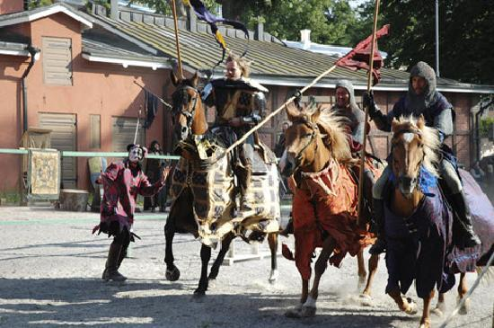Turku, Finland: Midevil Knights