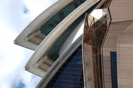 Sydney Architecture Walks: Side view of Sydney Opera House