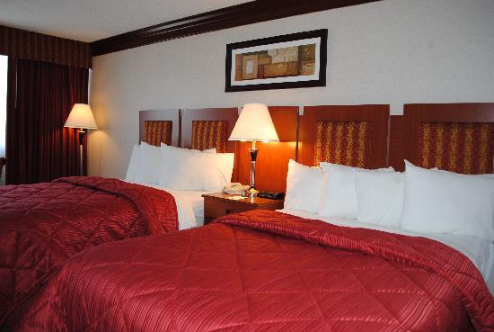 Quality Inn: Newly Remodeled Double Room