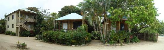 Jungle Huts Resort: panoramic view of Jungle Huts