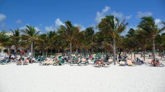 Hotel Riu Playacar : La playa