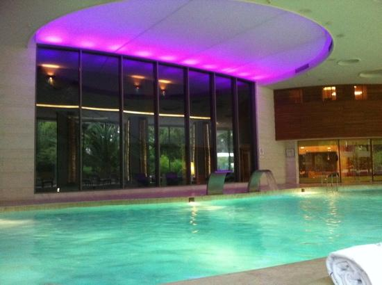 Swissotel Grand Efes Izmir: Indoor Pool