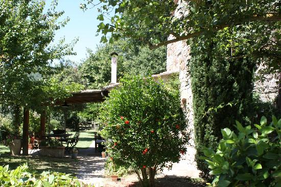Torreluca B&B: Il giardino