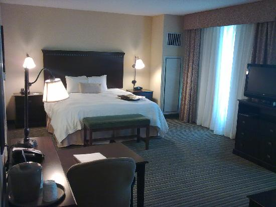 Hampton Inn & Suites National Harbor/Alexandria Area: View on the room...