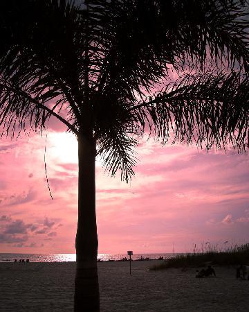 Plaza Beach Hotel - Beachfront Resort : Sunset