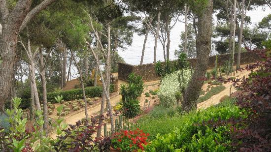Cactus garden fotograf a de jard n bot nico de cap roig for Jardin botanico cap roig