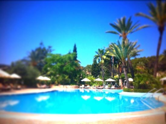 喜來登馬略卡阿拉貝拉高爾夫酒店照片