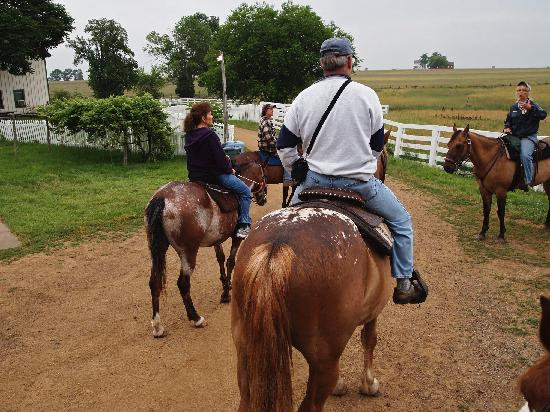 Hickory Hollow Horse Farm : On The Trail