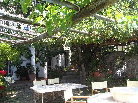 La Fenice : patio where breakfast is served