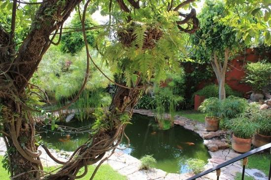 Casa Puesta Del Sol: the garden and the nature at the hotel