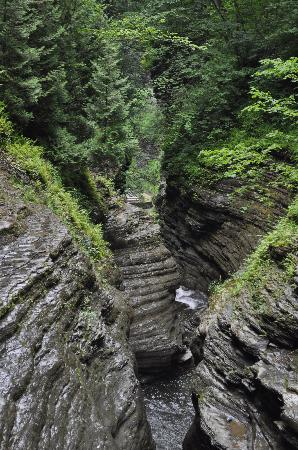 Watkins Glen State Park Campground: The Gorge