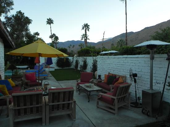Casa Ocotillo: Another shot of the beautiful oasis