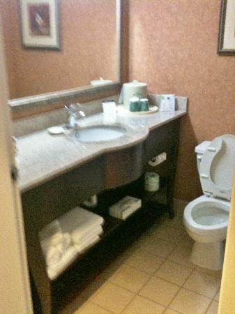 Wingate by Wyndham Greenville Airport: Clean bathroom with super soft towels