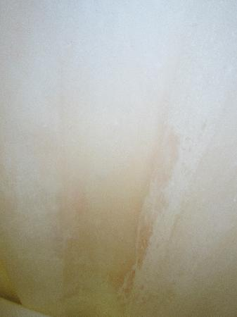 Blue Lady Resort: pink toilet type stain on shower curtain