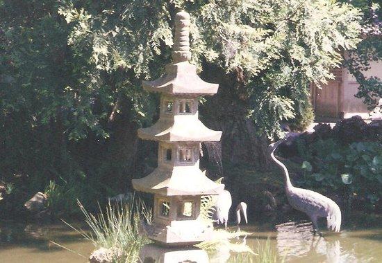 Japanese Tea Garden : 日本にいるかのような雰囲気