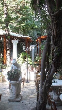 Kiniras Hotel: 'n heerlijke binnentuin waar men ook vlees aan 't spit bereidt