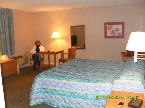 Econo Lodge South: Room - 1floor