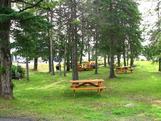 Baie-St-Paul, Canadá: Parc du Motel des Cascades