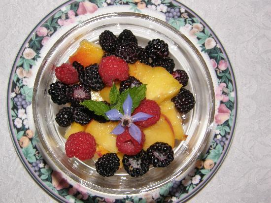 Brookside Manor Bed and Breakfast: Chautauqua County Fruit with Breakfast